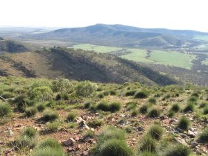 Horseshoe Rim 4WD Adventure Track - WA Accommodation