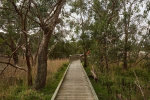 The Briars Park Walking Trails - WA Accommodation