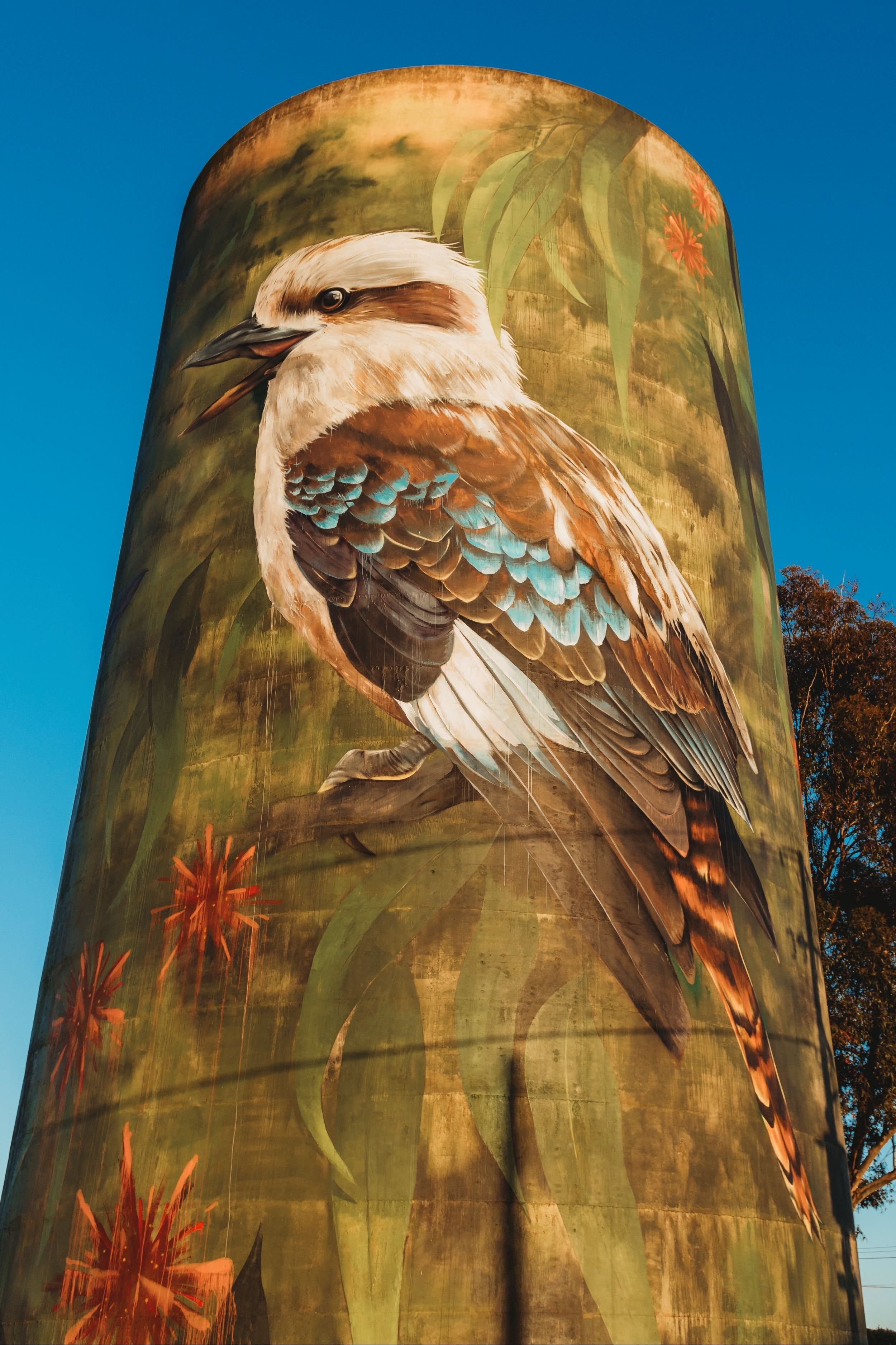 Deniliquin Water Tower Mural - WA Accommodation