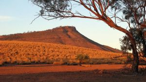 Dutchman Stern Conservation Park Trail - WA Accommodation