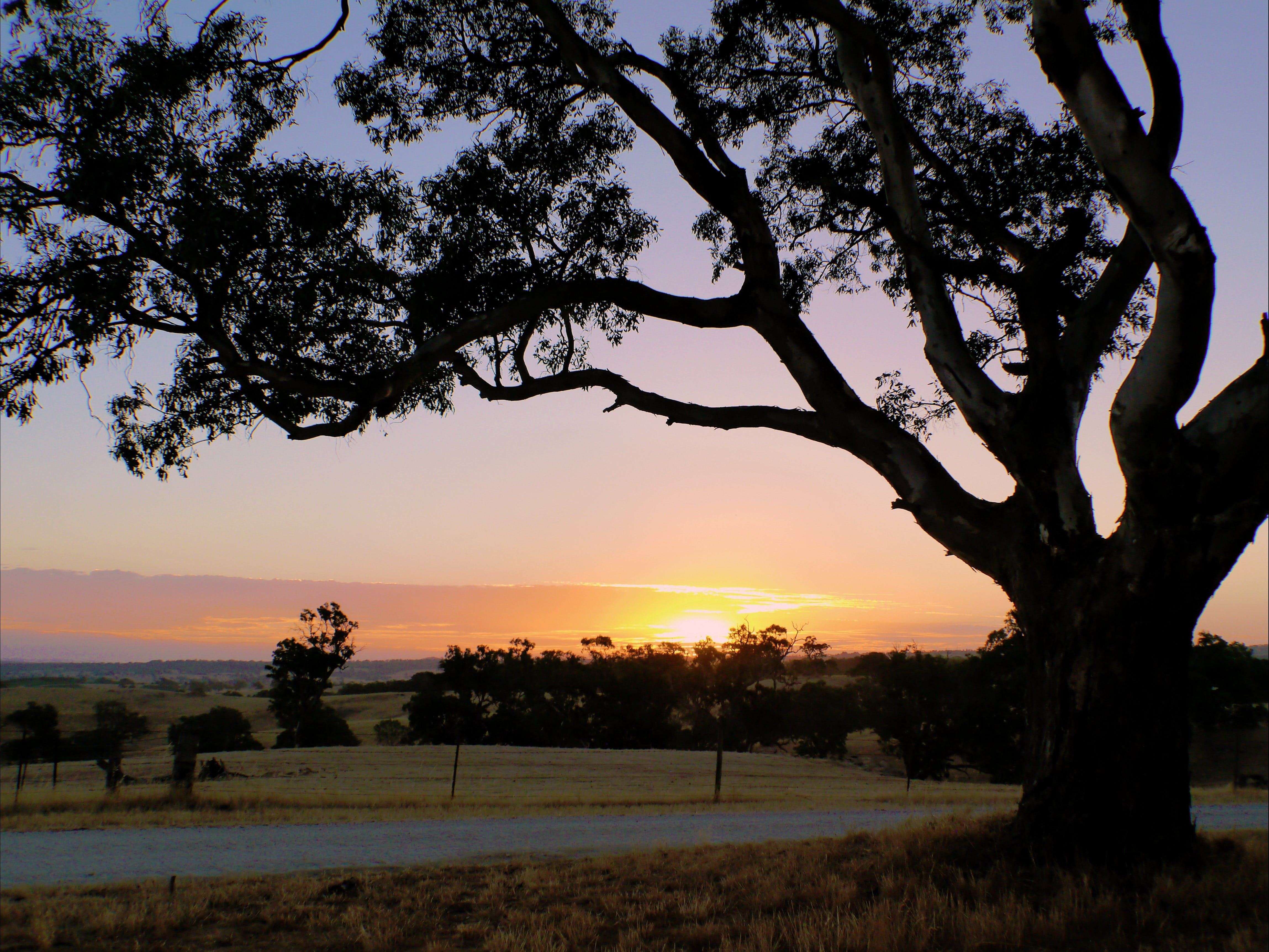 Eden Valley Lookout - WA Accommodation