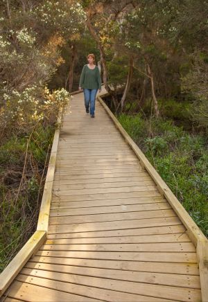 Balcombe Creek Estuary Boardwalk - WA Accommodation