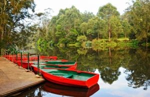 Lane Cove National Park - WA Accommodation
