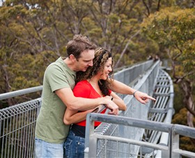 Valley of the Giants Tree Top Walk - WA Accommodation