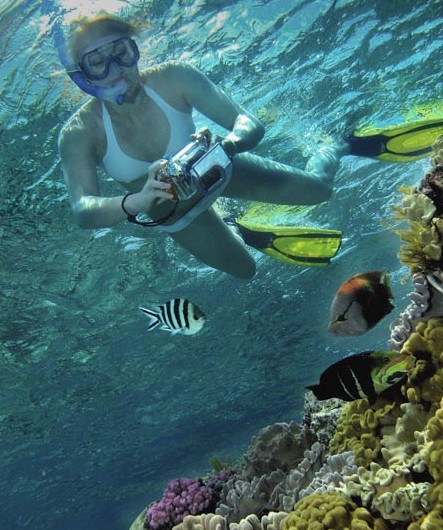 Calypso Reef Charters - WA Accommodation