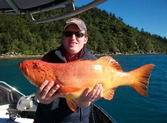 Gone Fishing by Coral Sea Fishing Charters Airlie Beach