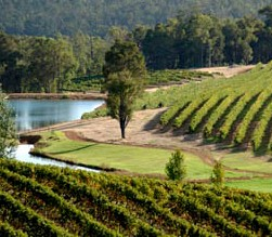 Brookhampton Estate Vineyard - WA Accommodation
