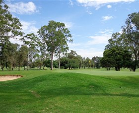 Singleton Golf Club - WA Accommodation