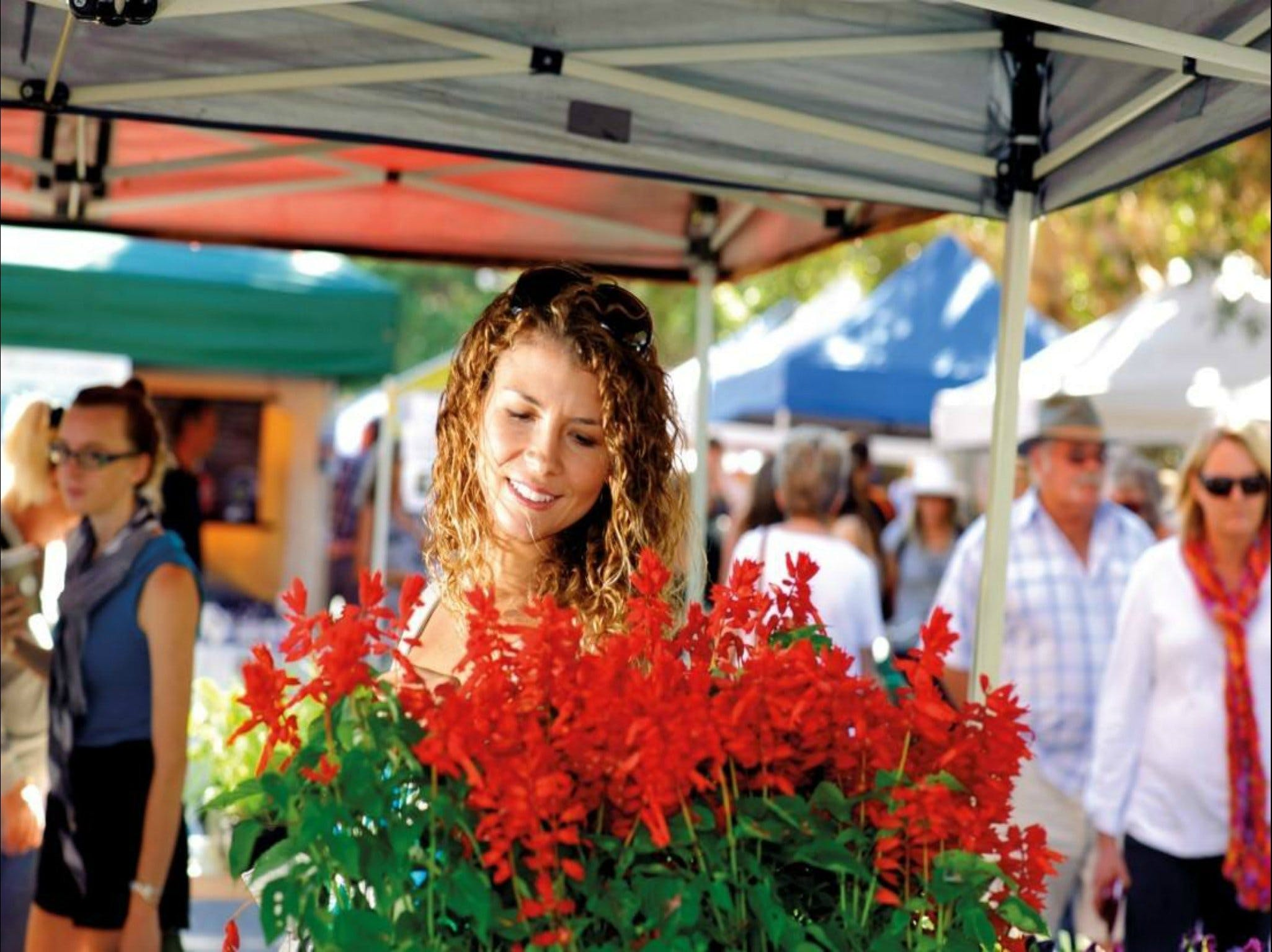 Ballina Missingham Farmers Market - WA Accommodation