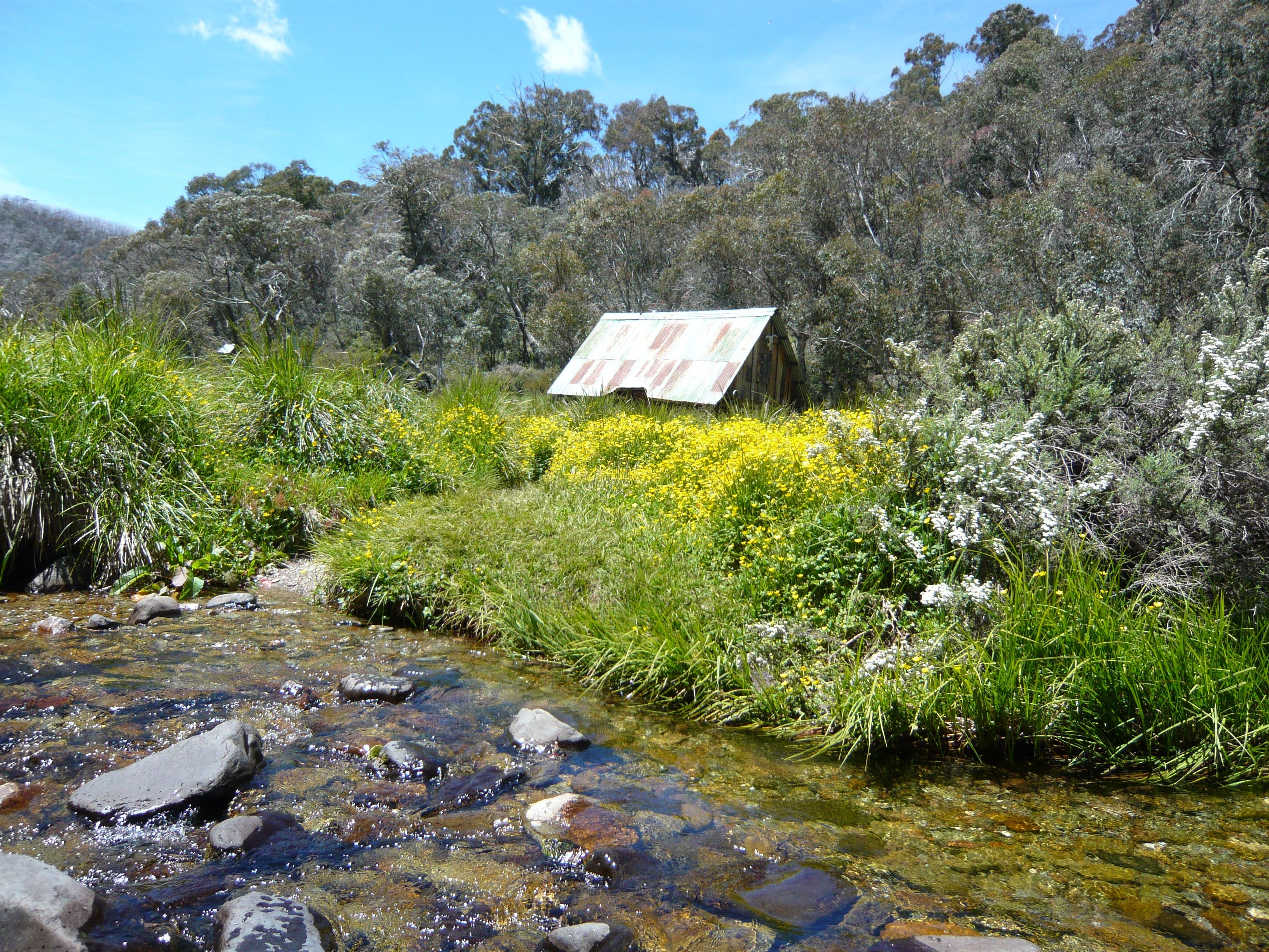 Hedonistic Hiking's Falls Creek to Hotham - WA Accommodation