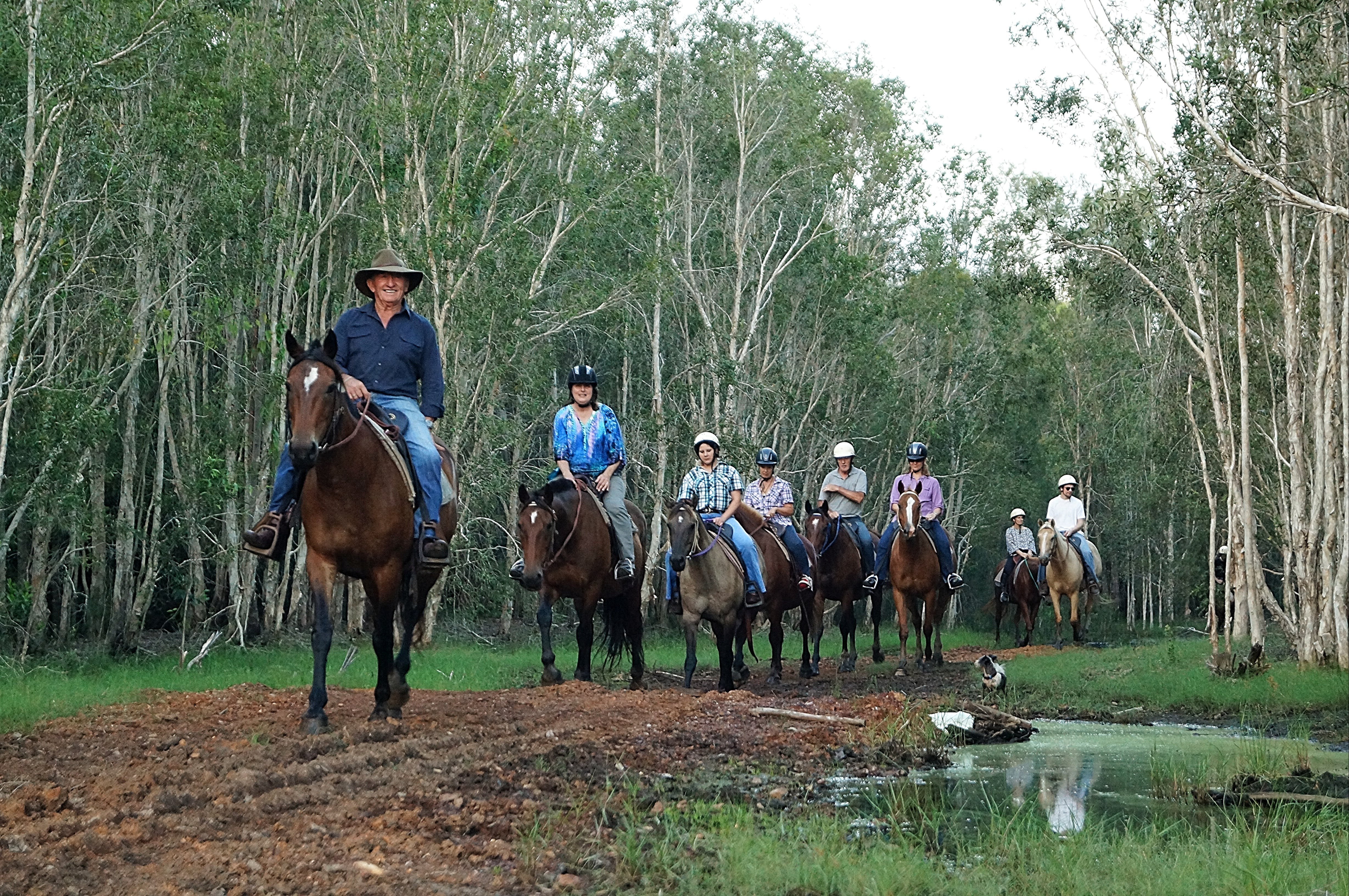 Night Horse Ride and Dinner - WA Accommodation