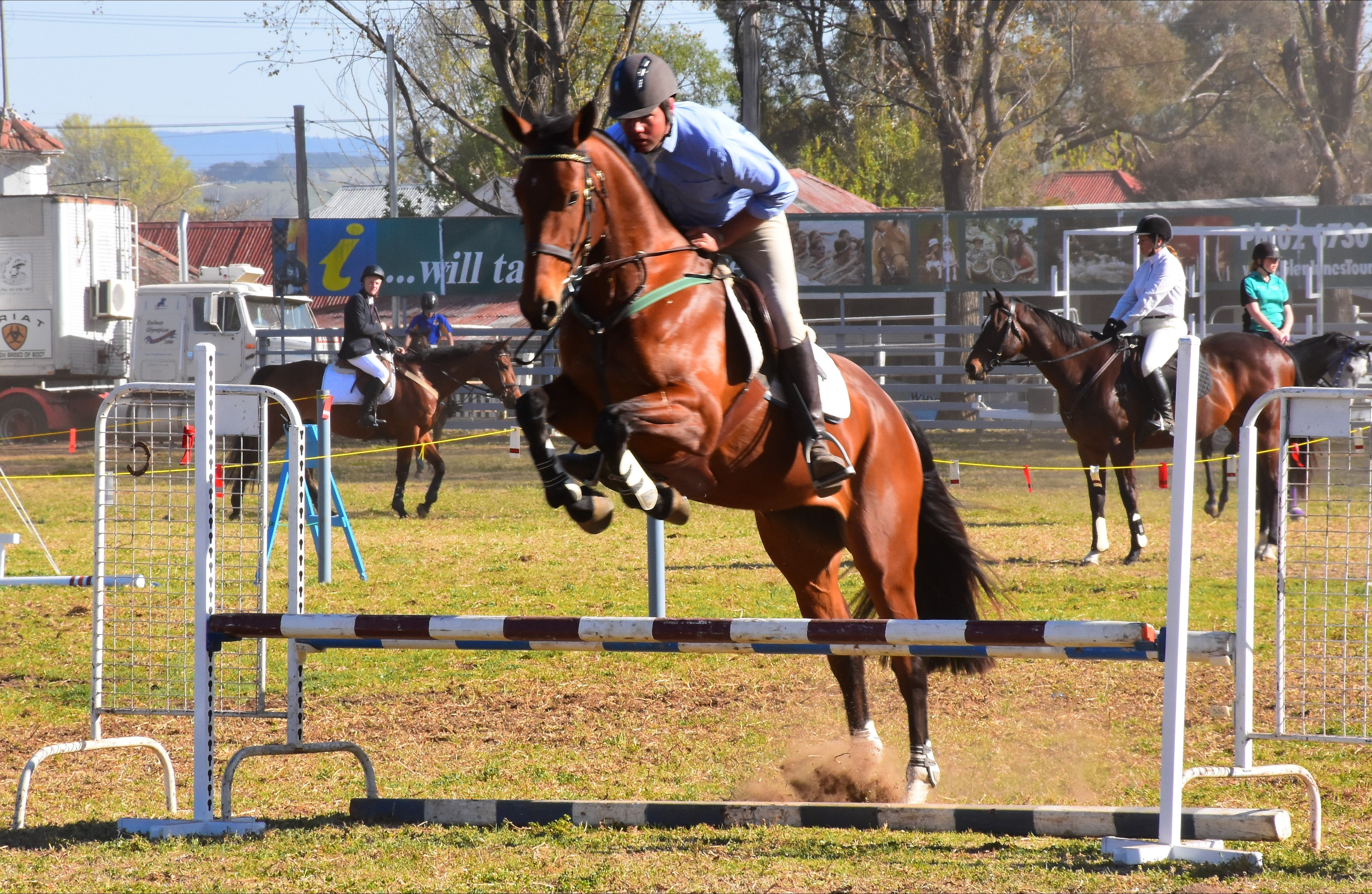 Glen Innes Pastoral and Agricultural Show - WA Accommodation