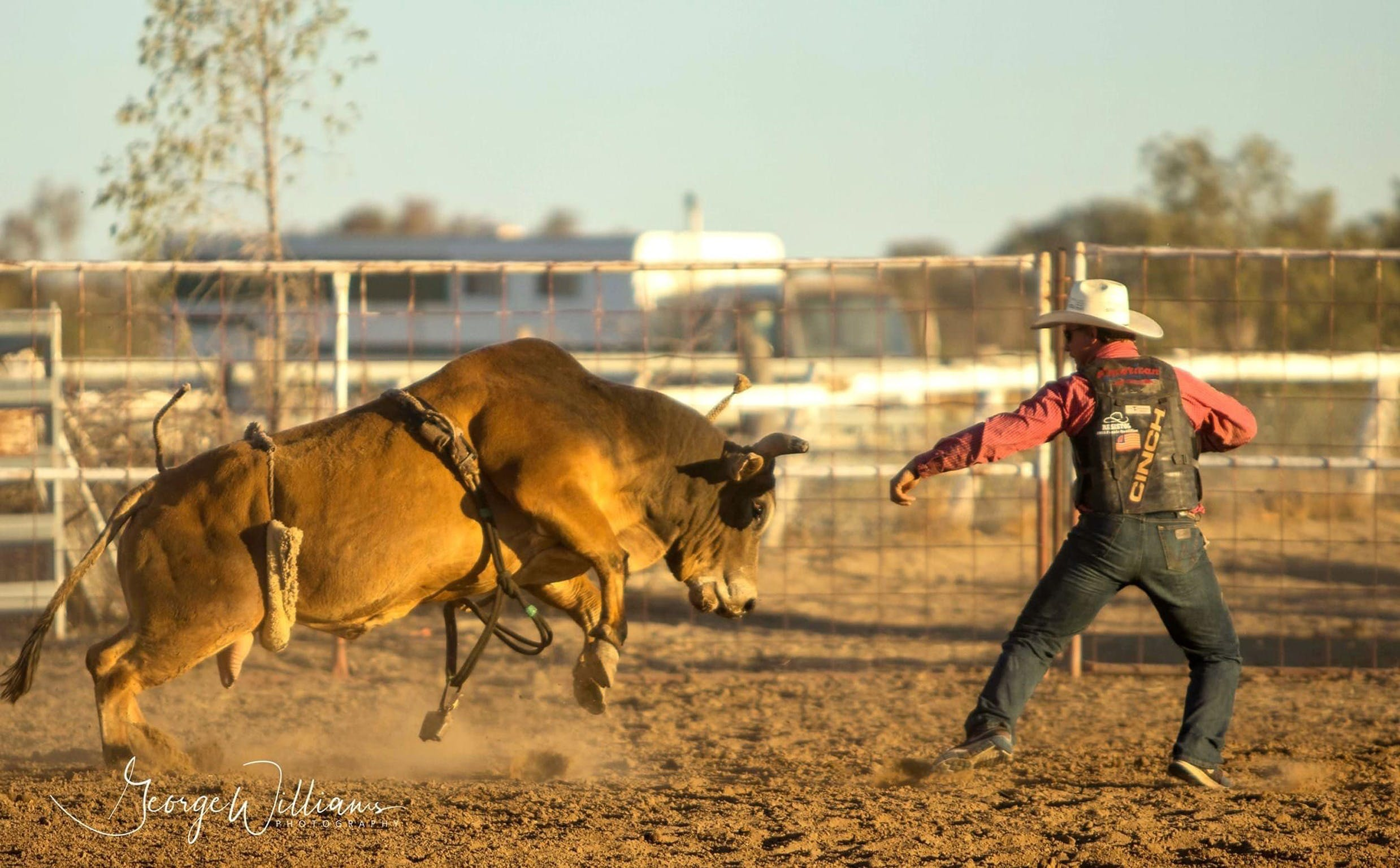 Walgett Charity Bushman's Carnival Rodeo and Campdraft - WA Accommodation