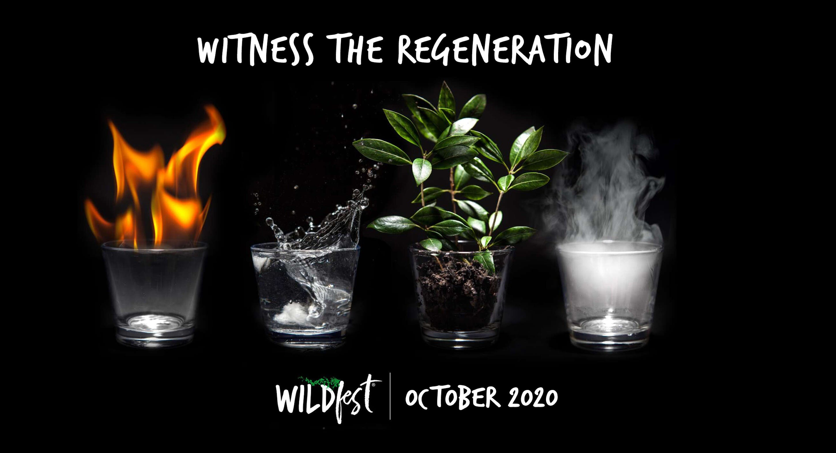 Wildfest - Annual Festival - WA Accommodation