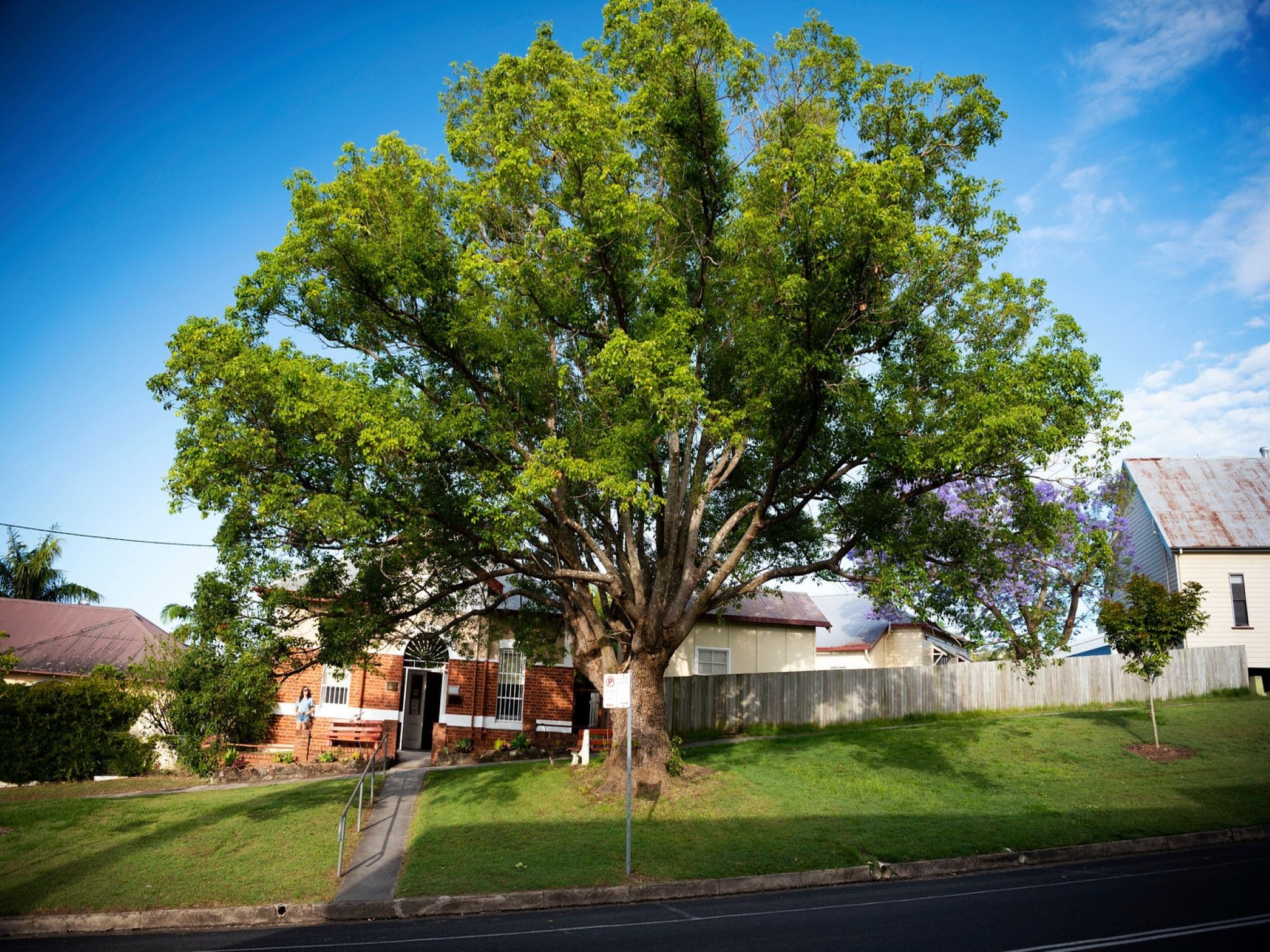 Big Bat Wildlife and Eco Festival - WA Accommodation