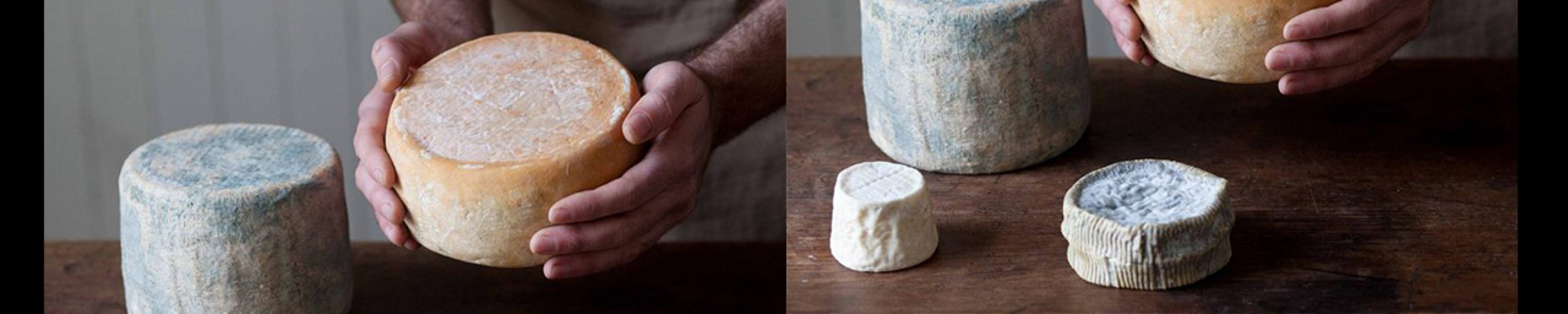 Cheese Making Basics Class - WA Accommodation