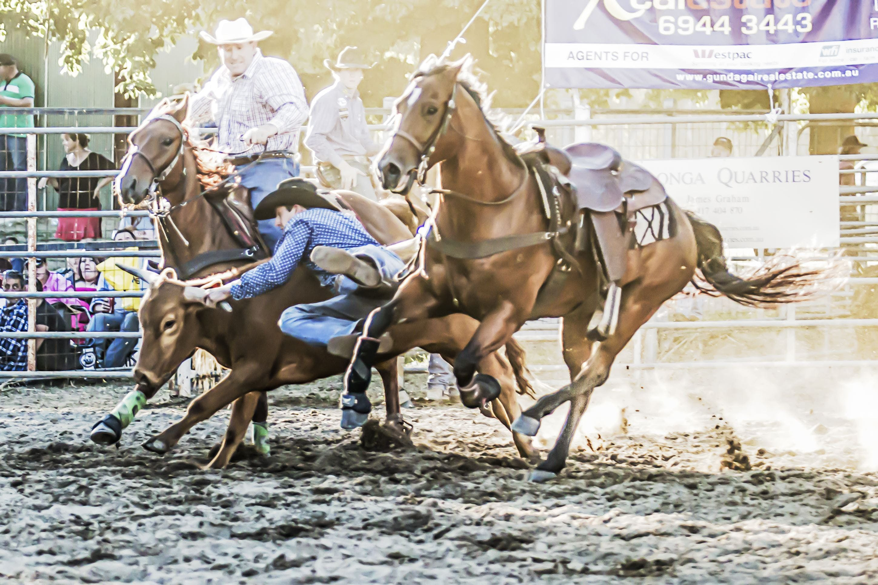Gundagai Rodeo - WA Accommodation