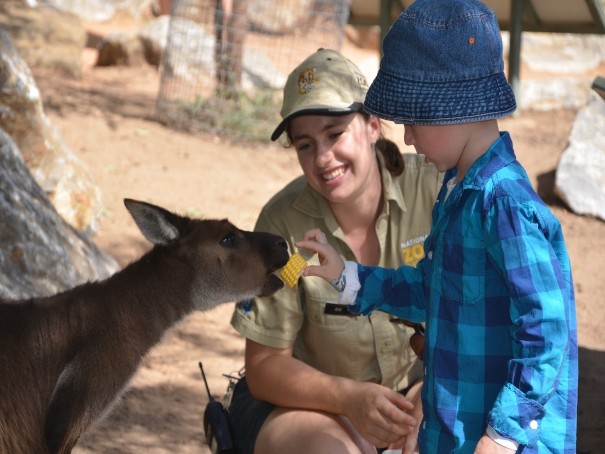 Mums and Cubs And Dads too - WA Accommodation