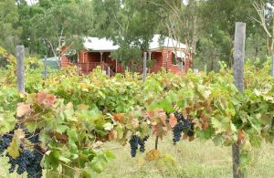 Fergies Hill Spa Cottage  Granite Ridge Wines - WA Accommodation